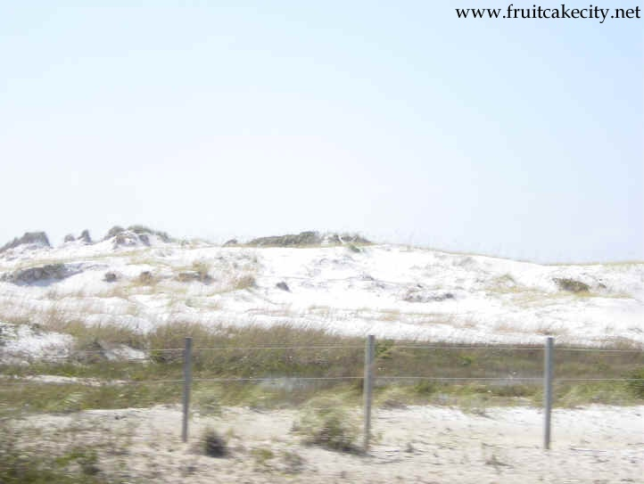 Snow white dunes near Destin Florida